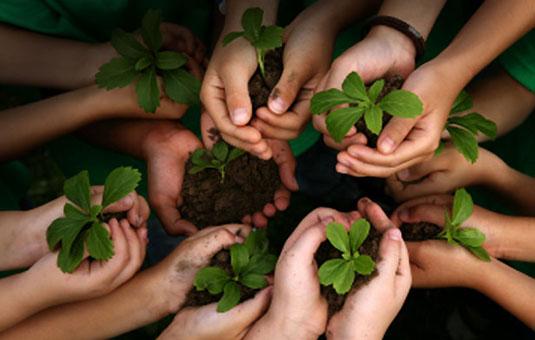 Corporate-Social-Responsibility-program